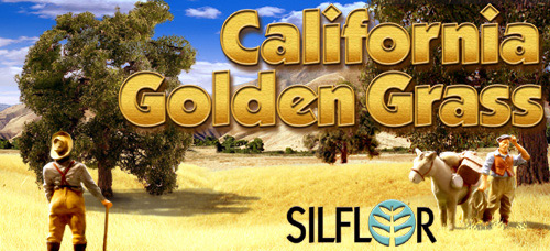California Golden Grass